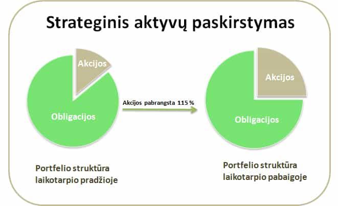 diversifikavimo portfelio strategija iq pasirinkimo dienos prekyba